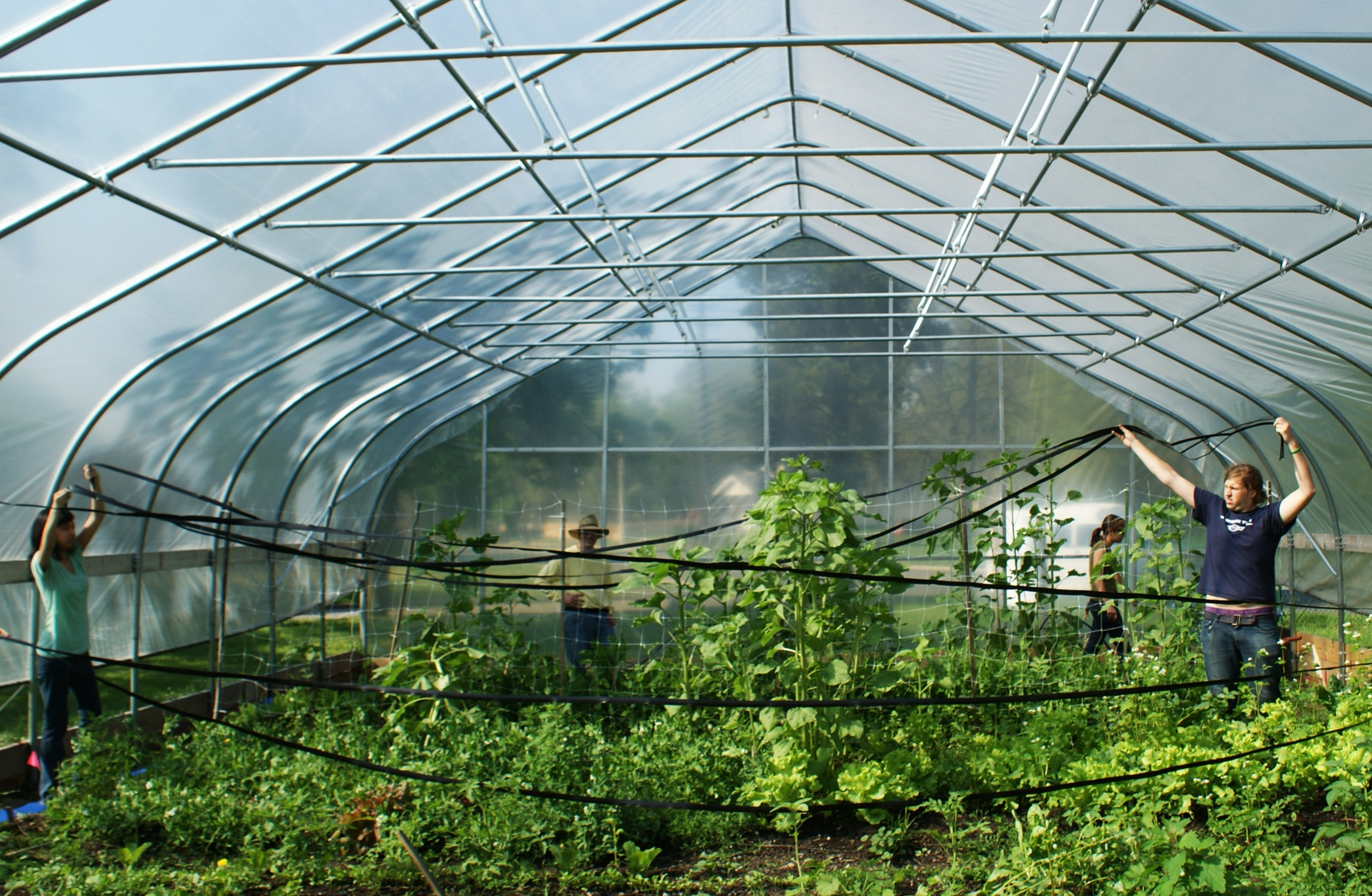 More than a garden sprouts in pontiac with slide show for Bureau county metro center
