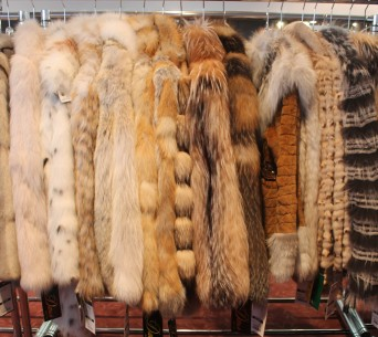 Dittrich Furs has operated in Detroit since 1893. PHOTO/SELAH FISCHER