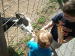 As Michigan's rough winter fades into memory, two children enjoy feeding a goat on a warm spring day at Frontier Town in Romeo. PHOTO/JOHN KAMICHITIS