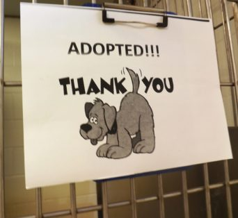 melcher-adopted-sign